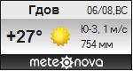 Погода от Метеоновы по г. Гдов
