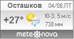 Погода от Метеоновы по г. Осташков