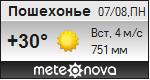 Погода от Метеоновы по г. Пошехонье