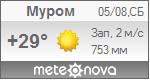 Погода от Метеоновы по г. Муром
