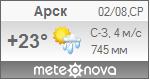 Погода от Метеоновы по г. Арск