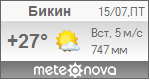 Погода от Метеоновы по г. Бикин