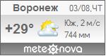 Погода от Метеоновы по г. Воронеж