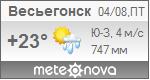 Погода от Метеоновы по г. Весьегонск