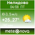 Погода от Метеоновы по г. Нелидово