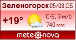 Погода от Метеоновы по г. Зеленогорск