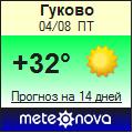 Погода от Метеоновы по г. Гуково
